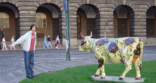 cow_bill
